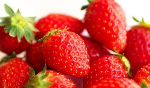 いちごさんの旬の時期(食べ頃)や味の特徴(糖度など)を解説