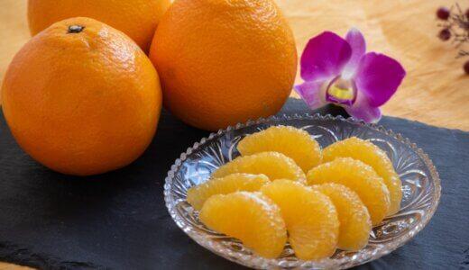 いよかんの旬の時期(食べ頃)や味の特徴(糖度など)を解説