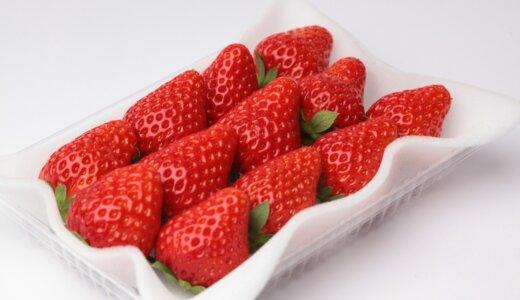 紅ほっぺの旬の時期(食べ頃)や味の特徴(糖度など)を解説