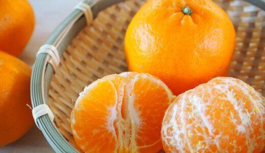 ポンカンの旬の時期(食べ頃)や味の特徴(糖度など)を解説