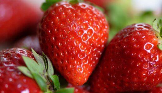 まりひめの旬の時期(食べ頃)や味の特徴(糖度など)を解説